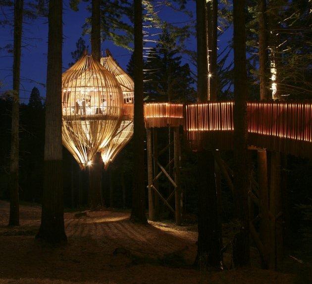 Романтичний ресторан на дереві Yellow Tree House, унікальний ресторан від PEA (9)
