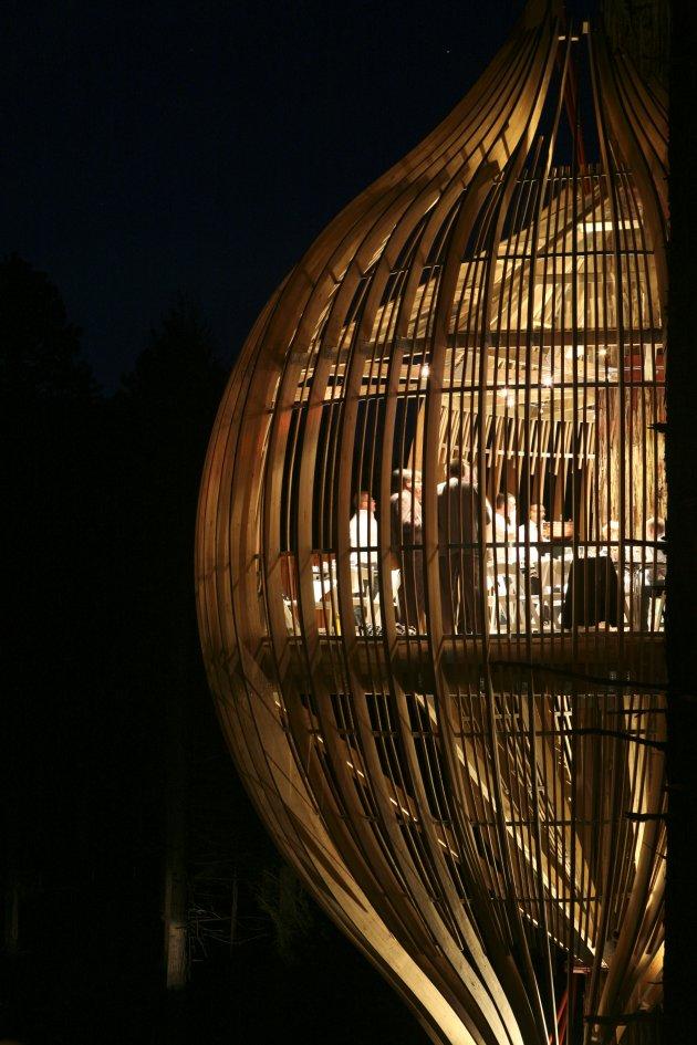 Романтичний ресторан на дереві Yellow Tree House, унікальний ресторан від PEA (7)