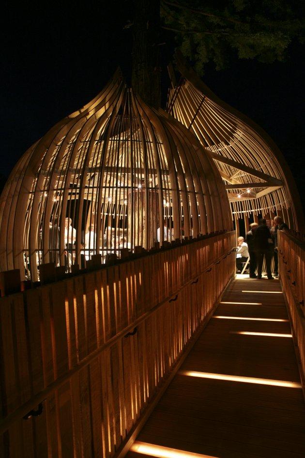 Романтичний ресторан на дереві Yellow Tree House, унікальний ресторан від PEA (6)
