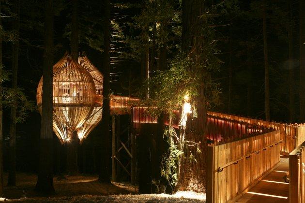Романтичний ресторан на дереві Yellow Tree House, унікальний ресторан від PEA (5)
