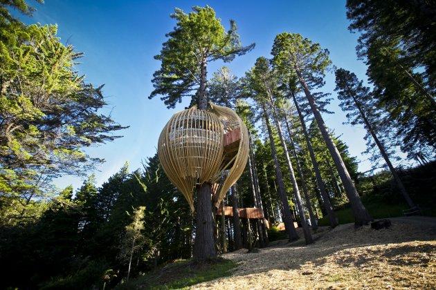 Романтичний ресторан на дереві Yellow Tree House, унікальний ресторан від PEA (15)