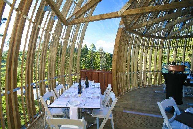 Романтичний ресторан на дереві Yellow Tree House, унікальний ресторан від PEA (13)