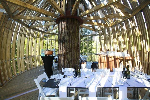 Романтичний ресторан на дереві Yellow Tree House, унікальний ресторан від PEA (12)