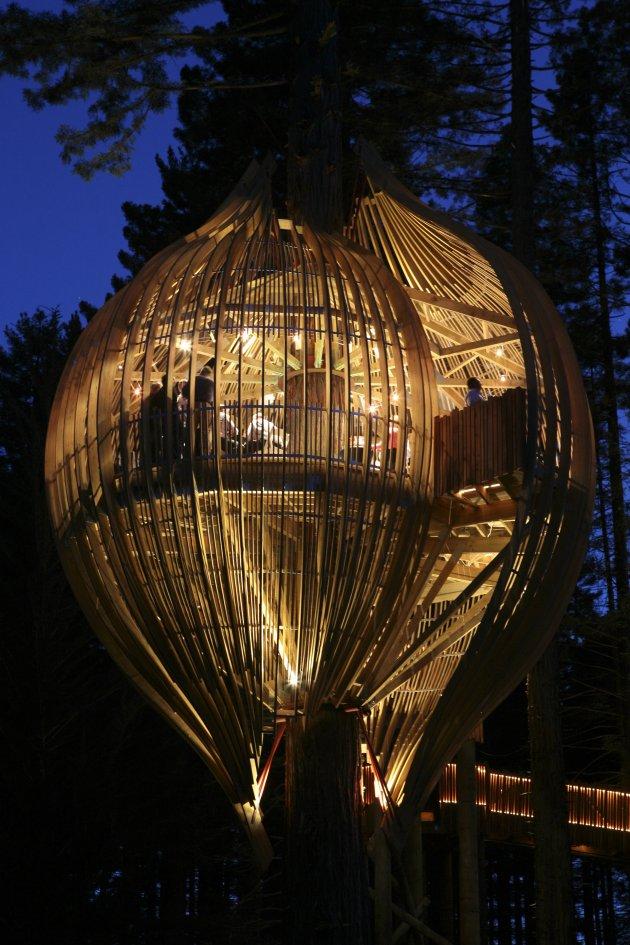 Романтичний ресторан на дереві Yellow Tree House, унікальний ресторан від PEA (11)