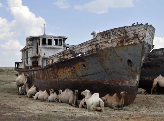 корабельні аварії, покинуті човни (12)