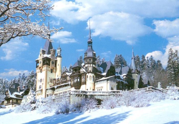 Замок Пелеш, Румунія (4)