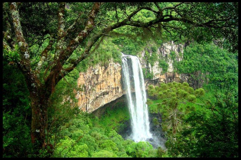 Водоспад Каракол, мальовничий водоспад в лісах Бразилії (5)