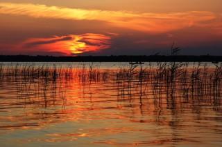 Шацькі озера: 8 дивовижних перлин Шацького національного природного парку (фото)