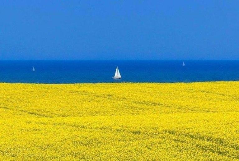 Так, я люблю Україну. 24 несподіваних фото української символіки 1059795990
