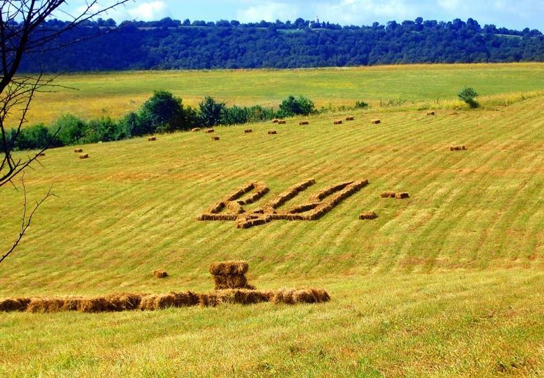 Кропивницкие фермеры из тракторов и комбайнов образовали крупнейший в Украине тризуб - Цензор.НЕТ 7850