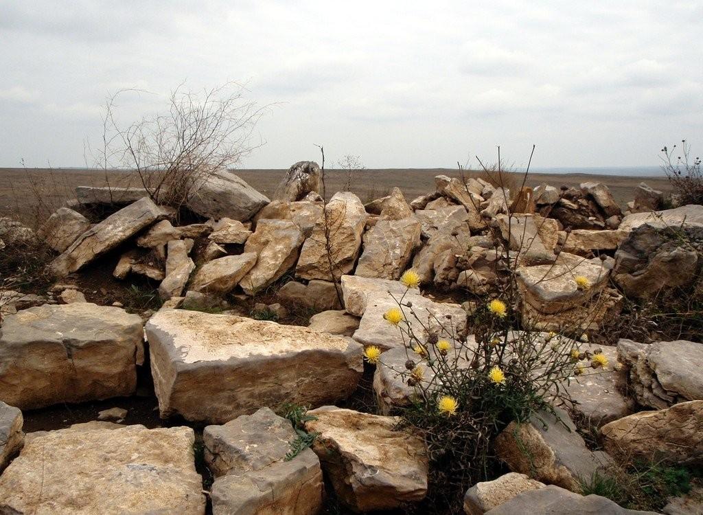 Феноменом, який міг би зацікавити біологів, є рослина, за народною назвою молодило. ЇЇ не мало б тут бути. Бо росте у місцях, багатих на вологу, а довкола — засушлива пустеля. Вчені кажуть, причина саме у святилищі, а точніше, його глиняній основі, яка не пропускає воду.