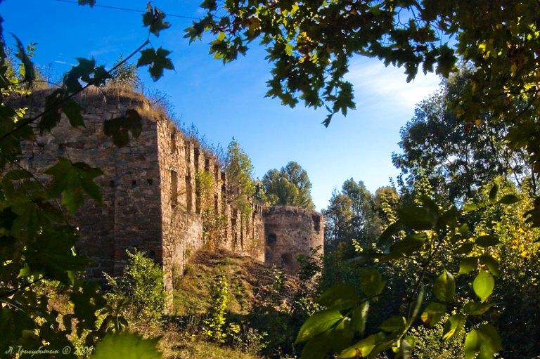 Руїни замку фото: Physyk