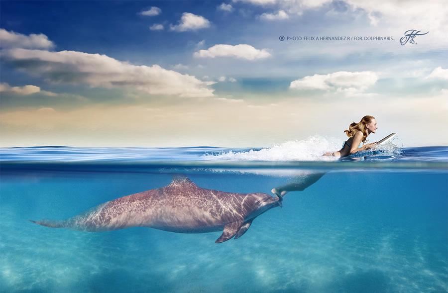Half-underwater-Photos-22