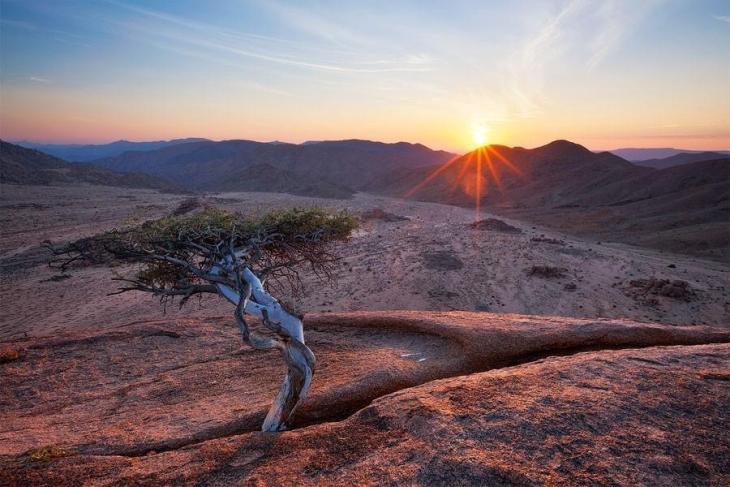 Фантастичні краєвиди пустельної Намібії (25)