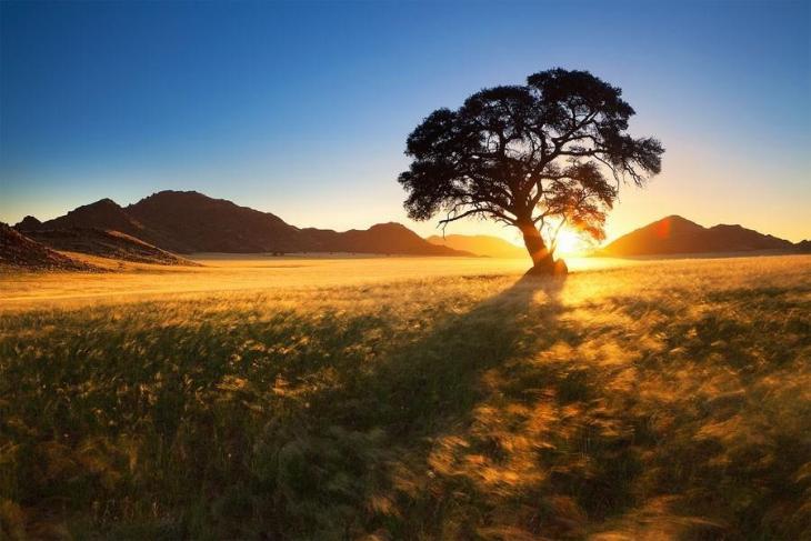 Фантастичні краєвиди пустельної Намібії (15)