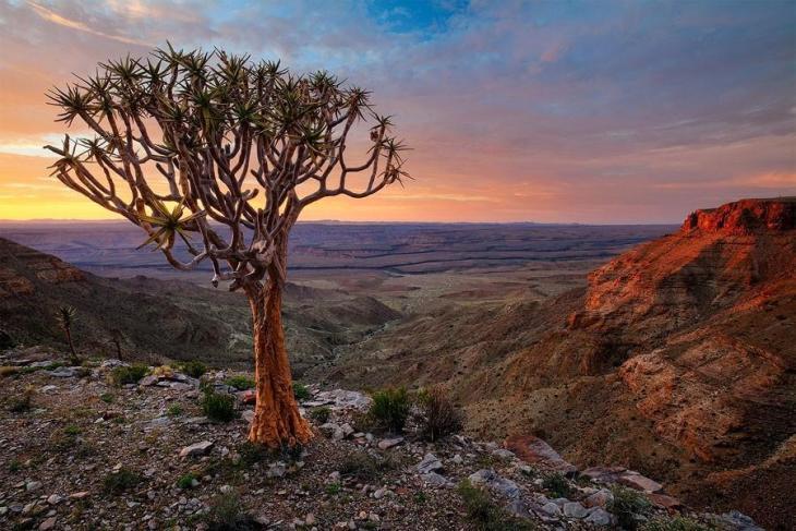Фантастичні краєвиди пустельної Намібії (7)