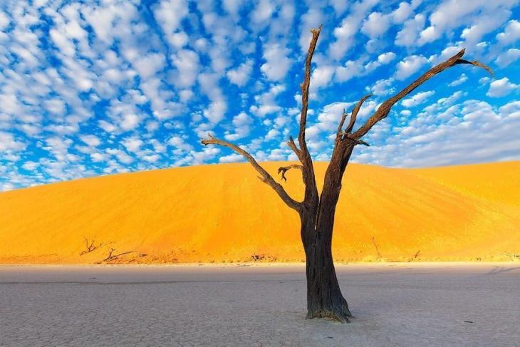 Фантастичні краєвиди пустельної Намібії (6)