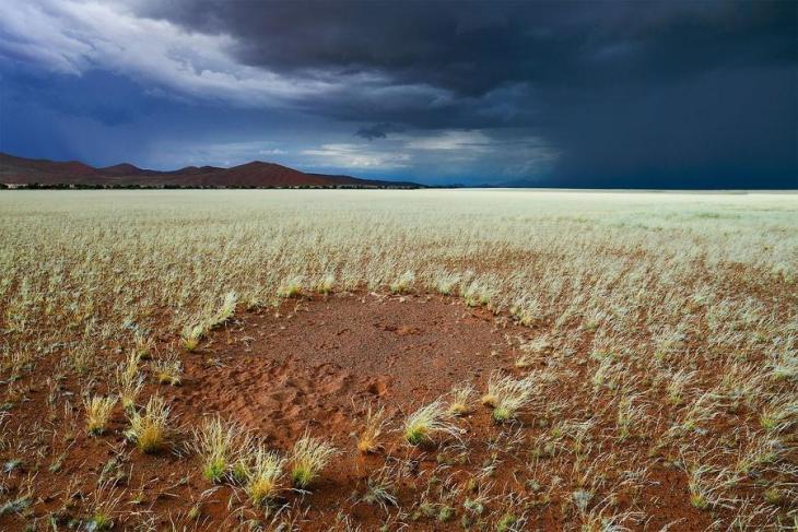 Фантастичні краєвиди пустельної Намібії (2)