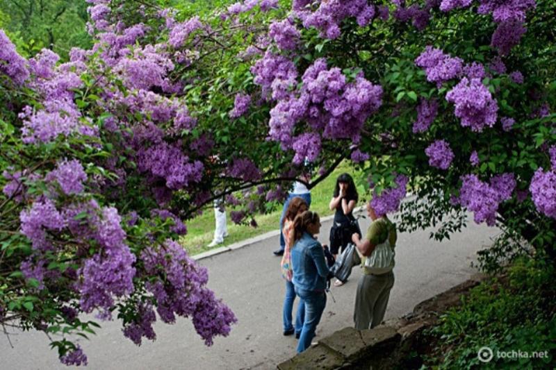 фото: travel.tochka.net