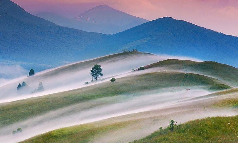 Карпатський світанок (Фото: Олена Петренко)