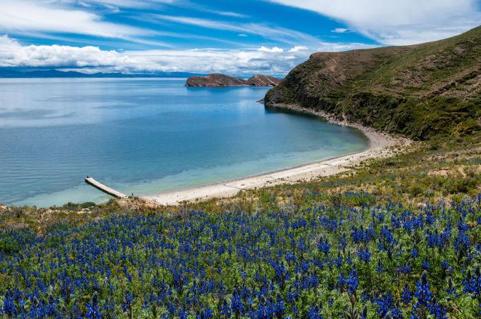 Озеро Тітікака. Болівія. Автор фото: Antony Harrison