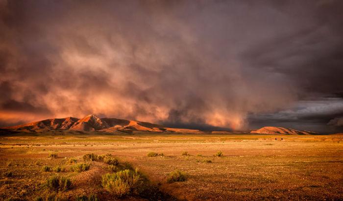 Всі відтінки золотого. Болівія. Автор фото: Antony Harrison.