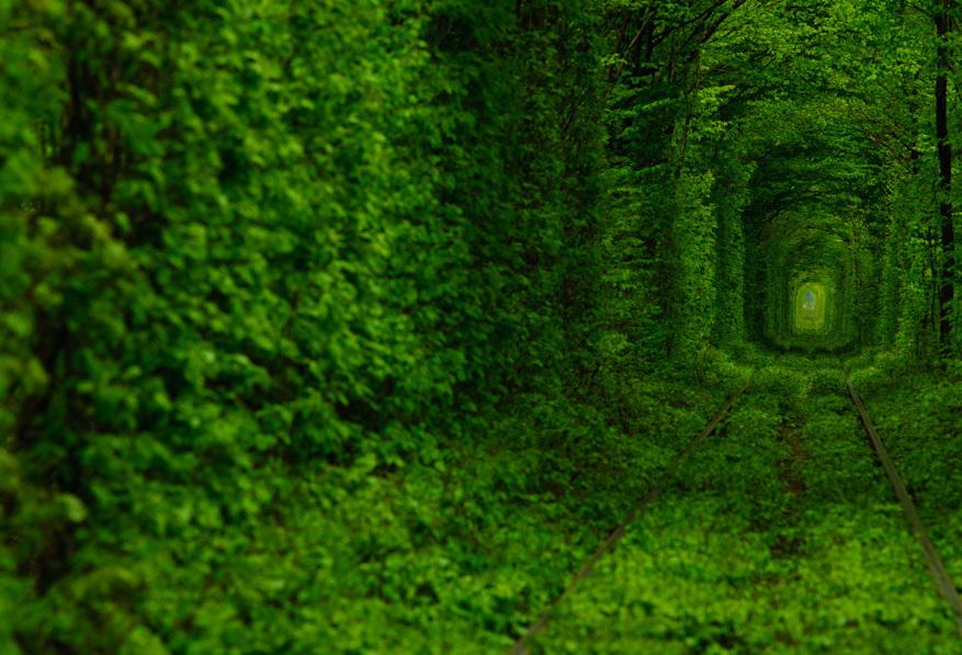 Тунель Закоханих. Клевань, Рівненська область.