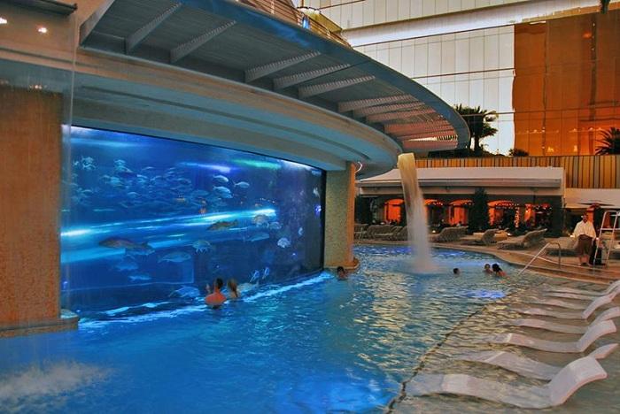 Унікальний басейн, розташований на території готелю Golden Nugget