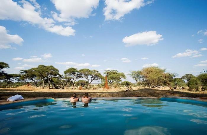 Басейн, розташований в національному парку Tarangire National Park