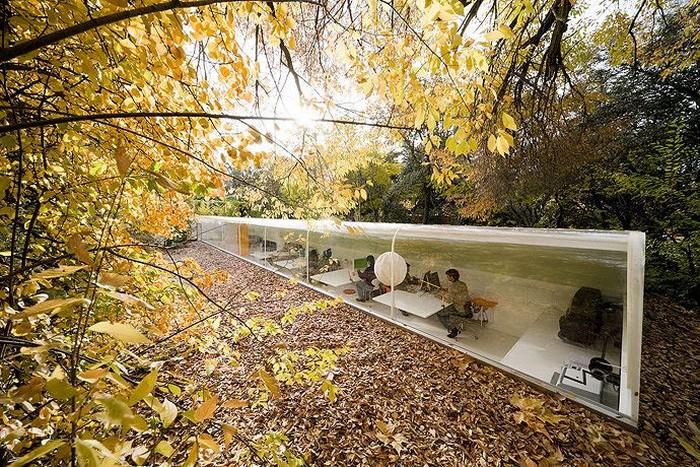 Офіс архітектурної студії Selgan Cano,   розташований в лісі