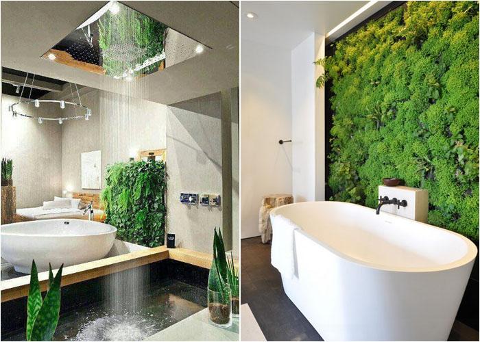 Кімнатні рослини в інтер'єрі
