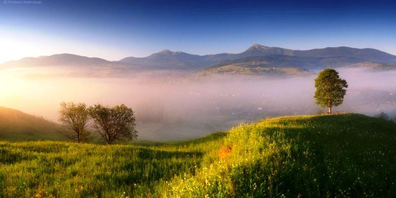 фото: Олександр Котенко