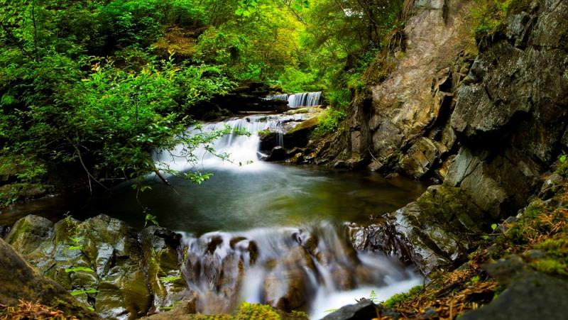 Річка Зубрівка фото: Вітергір