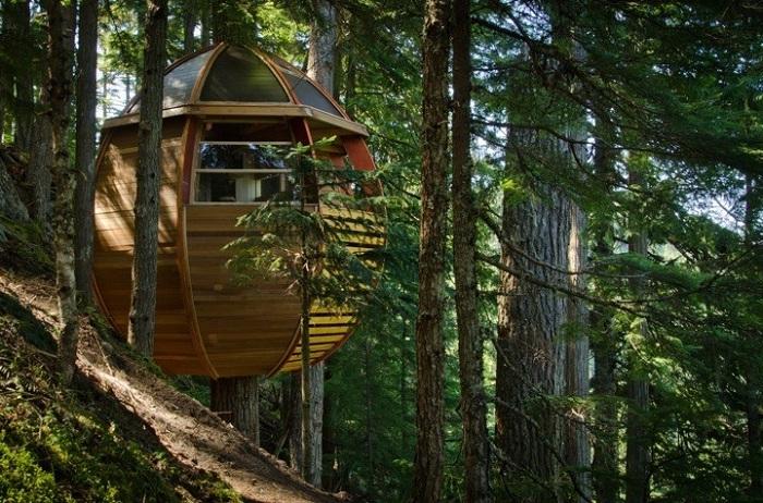 Hemloft - справжній будинок на дереві