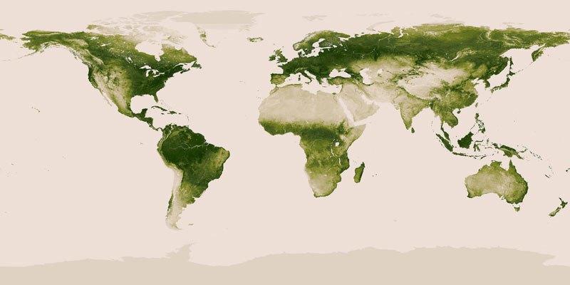 Карта рослинності планети