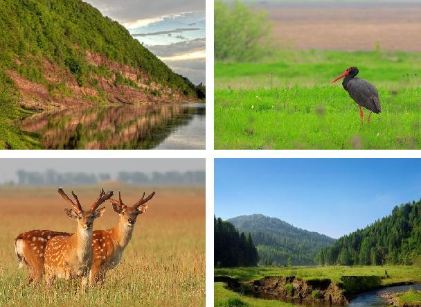 24 парки України. Неймовірна природа — гордість нашої країни (фото)