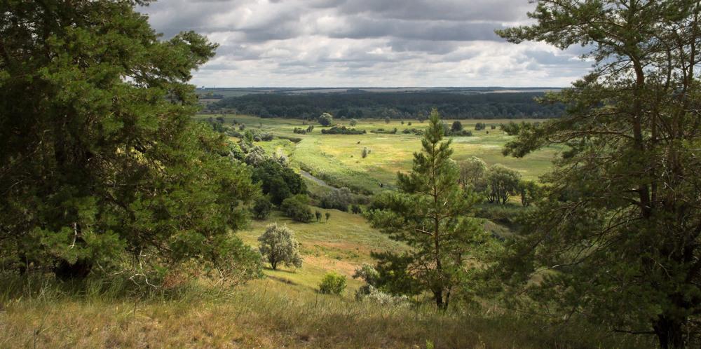 Луганська область фото: Олена Рєзнік