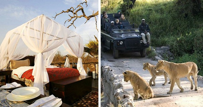 Lion Sands Game Reserve. По сусідству з готелем бродять дикі тварини.