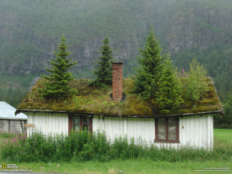 nature-architecture-buildings-norway-8