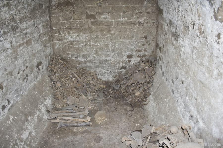 Кістки, знайдені під час розкопок фото: zametkiev