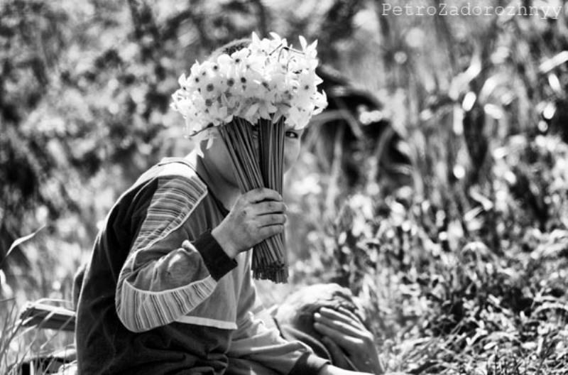 Хлопчик торгує нарцисами, вирощеними місцевими жителями поблизу Долини нарцисів фото: Петро Задорожний