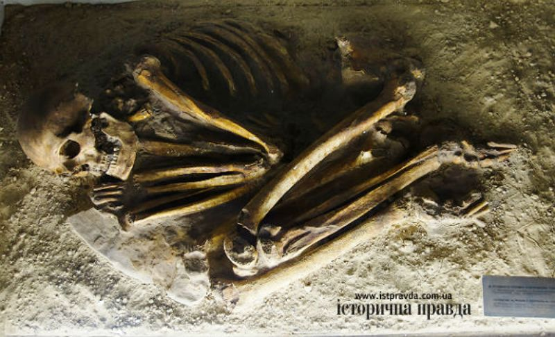 """Фрагемент родового могильника з села Василівка. Цьому скелету первісної людини - близько 10 тисяч років фото: """"Історична правда"""""""