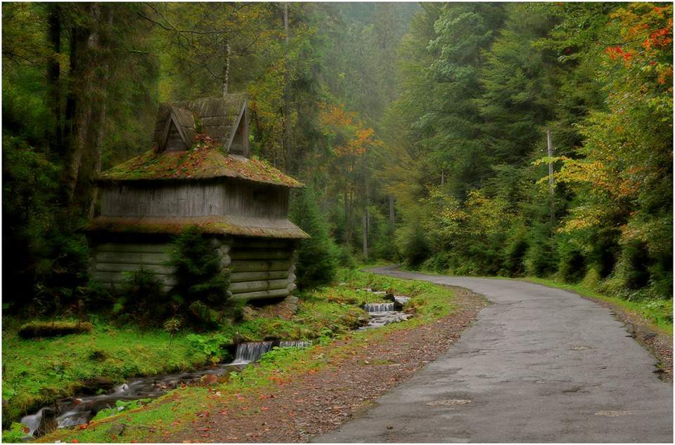 Дорога до Синевиру фото: Aeromast