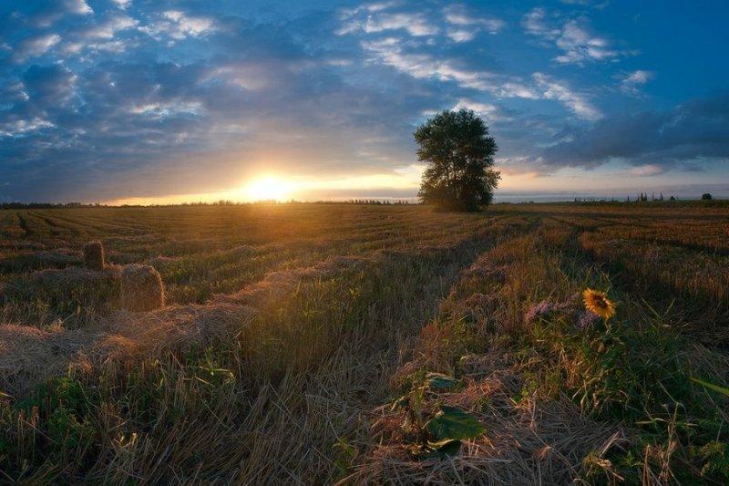 Макіївка фото: Балховитин Дмитрий