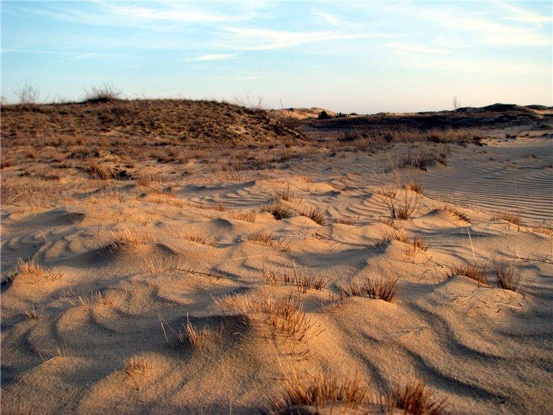 Олешківські піски фото: racking.org.ua