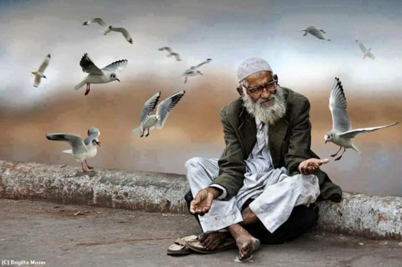muslim-Favim.com-2042433