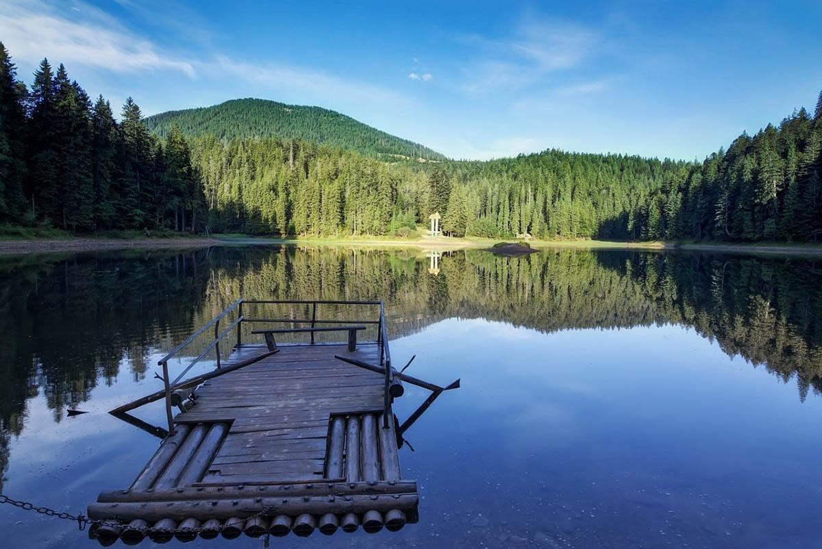 Леса и реки картинки