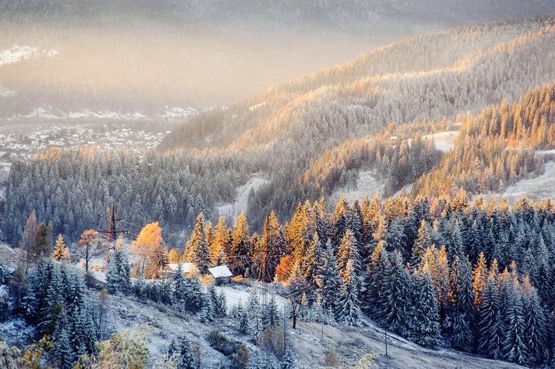 Морозний ранок у Карпатах Фото: Анатолій Глеб