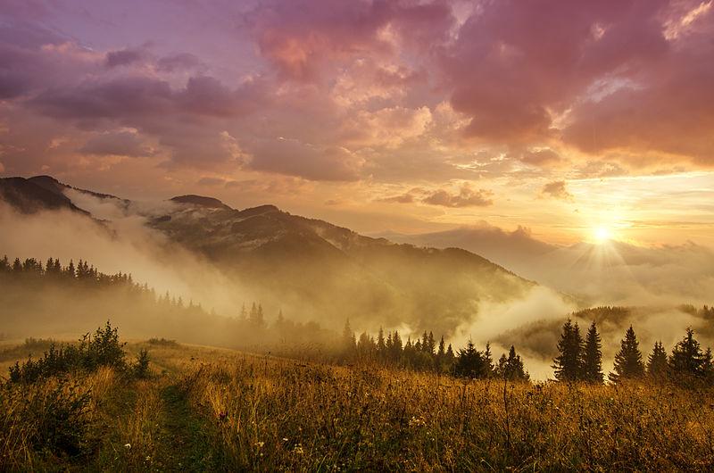 2 місце. Світанок у Карпатах. Карпатський національний природний парк. © Роксана Баширова