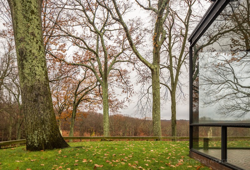 The Glass House05